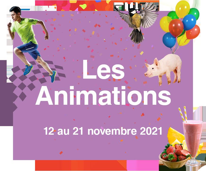 Vignette des animations des Automnales 2021