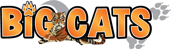 Logo Big Cats Exposition Bricklive