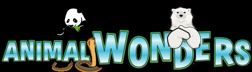 Logo Animal Wonders Exposition Bricklive