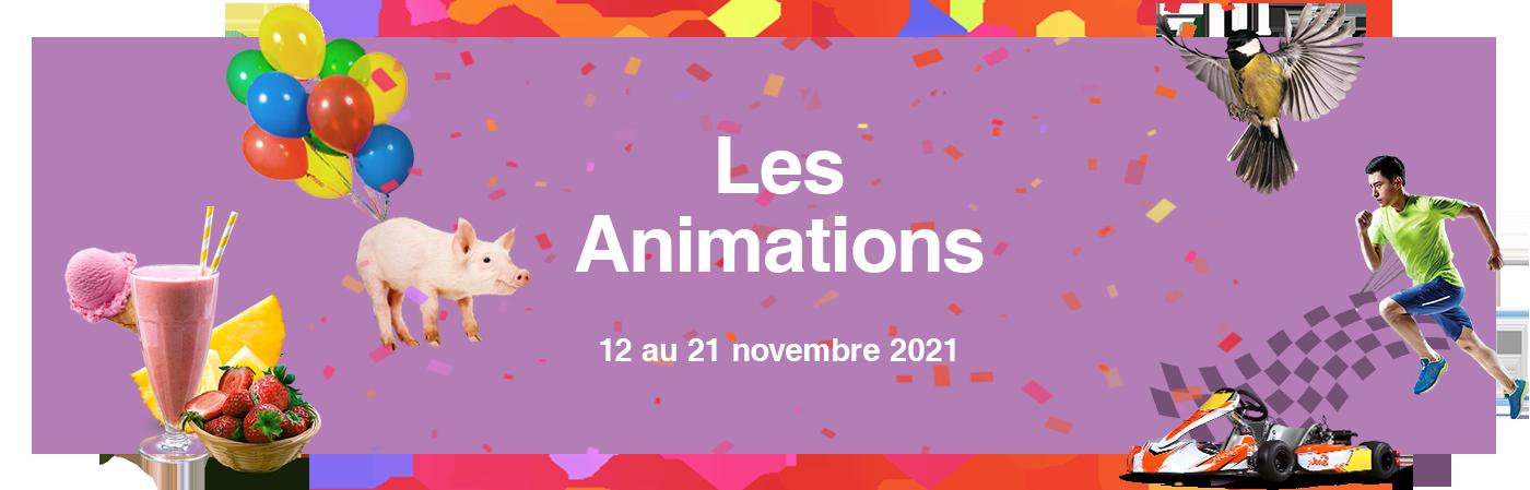 Vignette animations des Automnales 2021